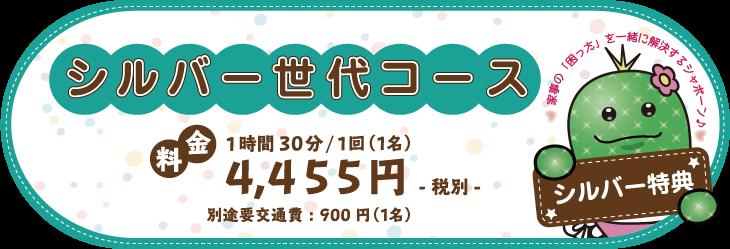 シルバー世代コース 2時間4455円
