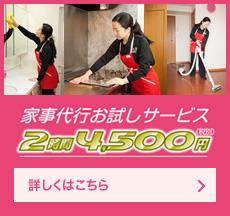 家事代行お試しサービス 2時間4500円(税別)